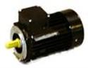 Picture of D50/D60 Replacement Motor - Type 19/80 - 0.75 kw